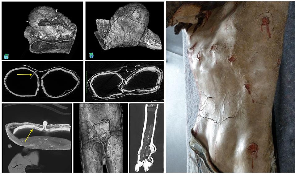 Bois polychromé scan